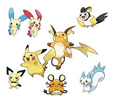 Pikachu family Photographic Print