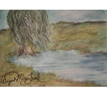Willow On Pond Photographic Print
