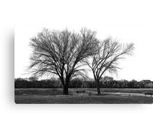 Crisp Winds. The Smell Of Home. Canvas Print