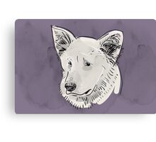 Shepherd. Sketch drawing. Black contour on a purple grunge background. Canvas Print