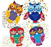 bright colorful owls on black background Photographic Print