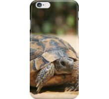 Young Tortoise Emerging From Its Shell iPhone Case/Skin