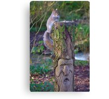 Squirrel on a carved tree stump Canvas Print
