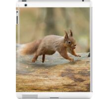 Red Squirrel Leaping iPad Case/Skin