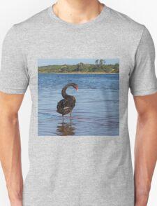 Black Swan (Cygnus atratus)  T-Shirt