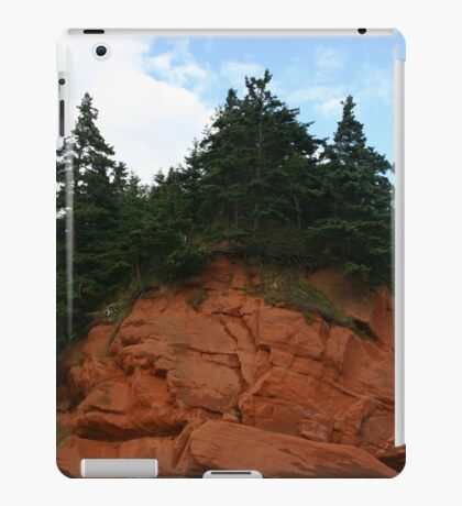 Cape Chignecto Nova Scotia iPad Case/Skin