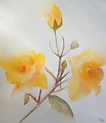 Yellow Rosebush by Deborah Pass