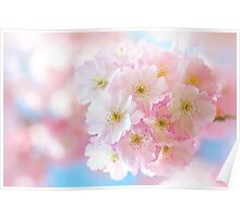 Delicate Spring Poster