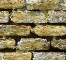 Old Bricks Sticker