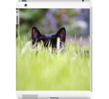 Catch A Cat's Eye iPad Case/Skin