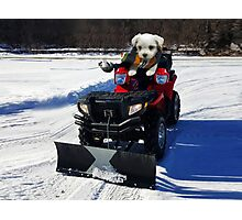 ATV CANINE  SNOW PLOUGHING -- VARIOUS APPAREL Photographic Print