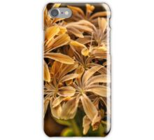 Flowers at Sunset iPhone Case/Skin
