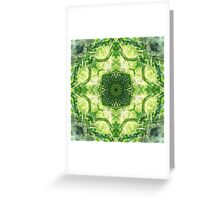 Forest 360 Greeting Card