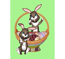 Cute Easter bunnies Photographic Print