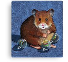Hamster Playing with Marbles, Colour Pencil Art Canvas Print