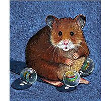 Hamster Playing with Marbles, Colour Pencil Art Photographic Print