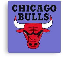 chicago bulls Canvas Print