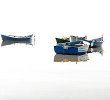 Flying on the water. by Patrizio Martorana