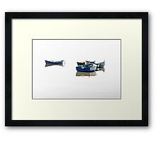 Flying on the water. Framed Print