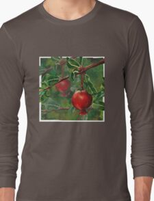 Hand Painted Red Pomegranate Fruit with Green Leaf Background Long Sleeve T-Shirt