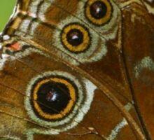 Beautiful Butterfly Wings of Meadow Brown Sticker