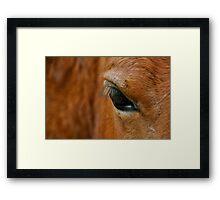 Ojo de Caballo Framed Print