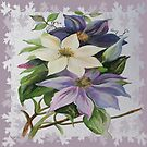 Climbing Clematis by taiche