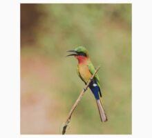 Red-throated Bee-eater near Simenti Kids Tee
