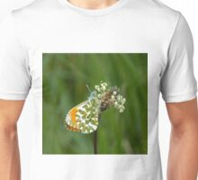 Orange-tip Butterfly Unisex T-Shirt