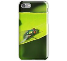 House Fly on a Leaf iPhone Case/Skin