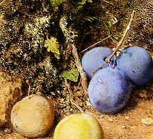 William Henry Hunt - Still Life with Greengages and Plums on a Mossy Bank by Adam Asar