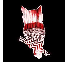 Twin Peaks Owl Photographic Print