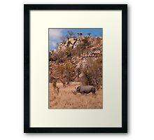 White Rhinoceros below a koppie, Kruger National Park Framed Print