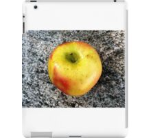 Apple . iPad Case/Skin