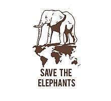 Save the elephant Photographic Print