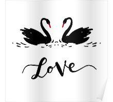 Inscription Love a couple of black swans. Romantic lettering Poster