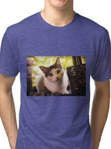 Meet Olaf Tri-blend T-Shirt