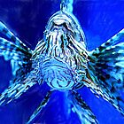 Lion Fish on Blue by ibgraffix