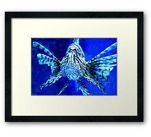 Lion Fish on Blue Framed Print