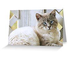 Sable Kitty Greeting Card