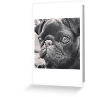 PUG FACE Greeting Card