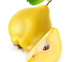 Quince fruit by 6hands