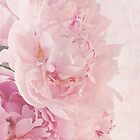 Multi Artsy Pink Peonies  by Sandra Foster