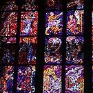 The Metropolitan Cathedral of Saints Vitus, Wenceslaus and Adalbert (Czech: metropolitní katedrála svatého Víta, Václava a Vojtěcha) by © Andrzej Goszcz,M.D. Ph.D