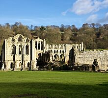 Rievaulx Abbey by John (Mike)  Dobson