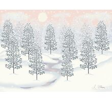 Snowy Day Winter Scene Print Photographic Print