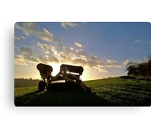 Farming equipment Canvas Print
