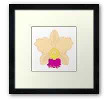 Yellow and Pink Orchid Framed Print