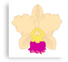 Yellow and Pink Orchid Canvas Print
