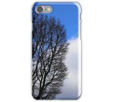 Winter Tree and Clouds 2 iPhone Case/Skin